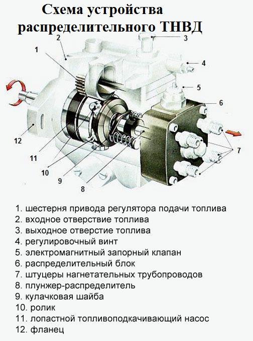 схема распределительного топливного насоса
